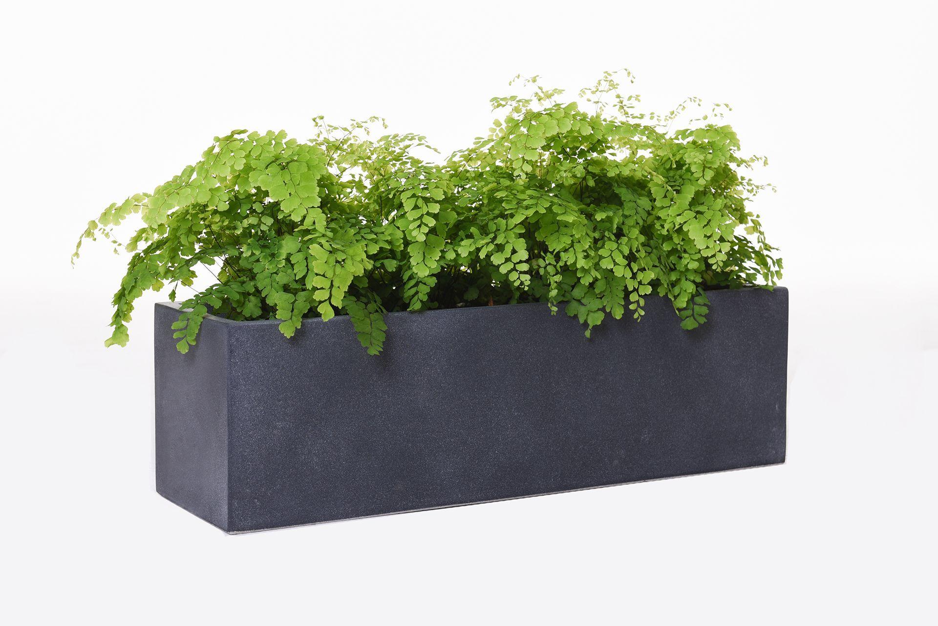 "blumenkasten fensterbankkasten beton ""flobo"", anthrazit"